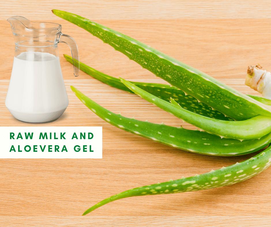 Raw milk and Aloevera gel